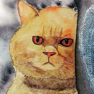 水彩 | 橘猫的凝视