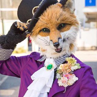 小狐狸大王每天都被自己帅醒