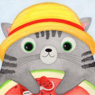 宅猫猫--喵