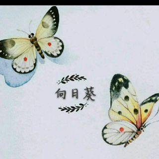 小小小向日葵
