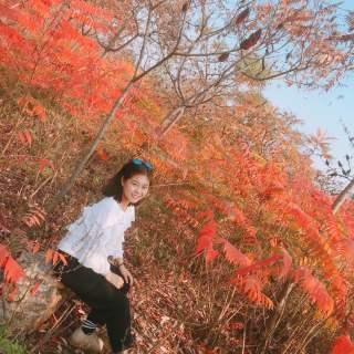 @王彤_Tong