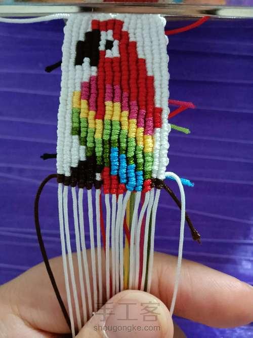 鹦鹉编织 第11步