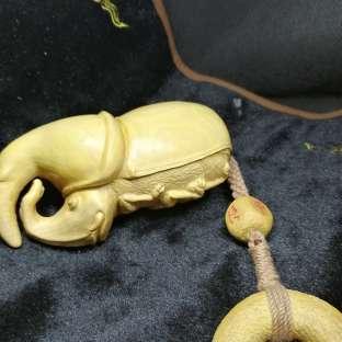 珍珠黄杨长戟甲壳虫制作原创